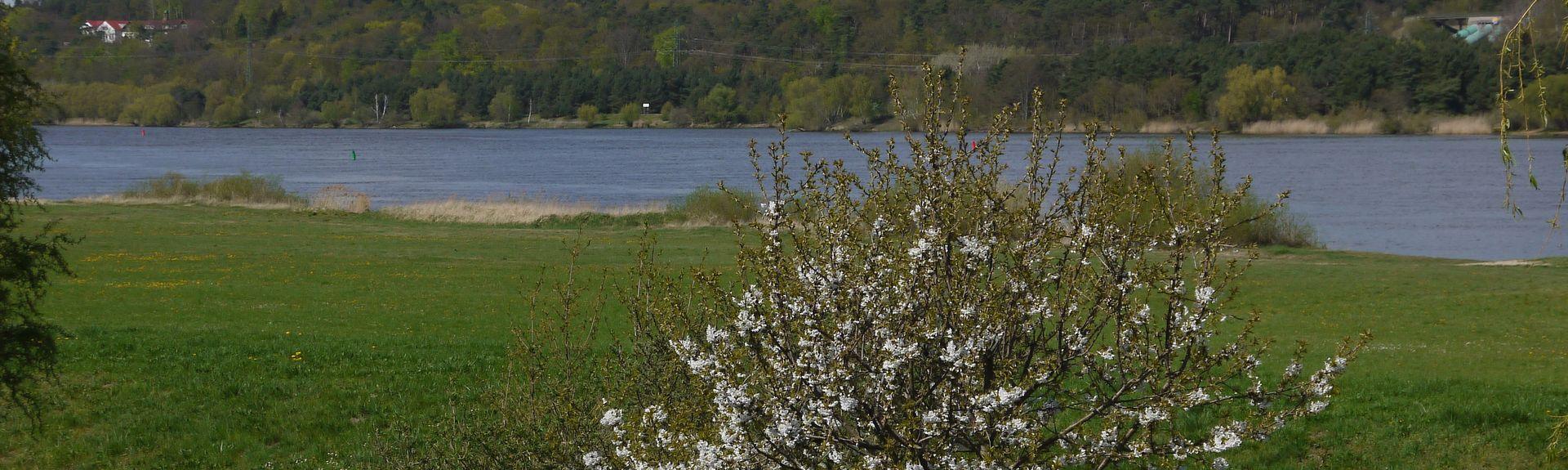 Aumuehle, Schleswig-Holstein, Allemagne