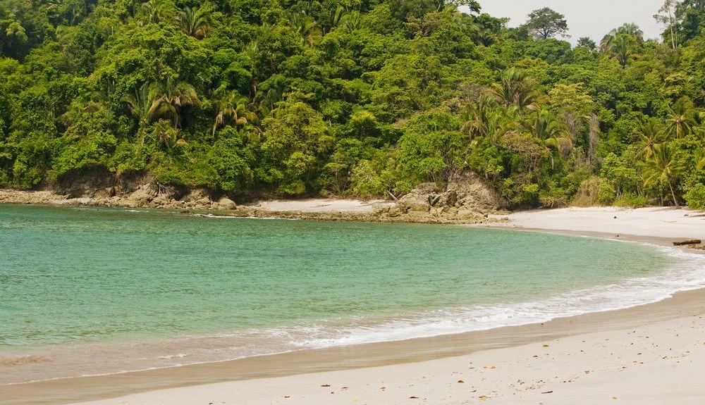Parc National Manuel Antonio, Quepos, Puntarenas, Costa Rica