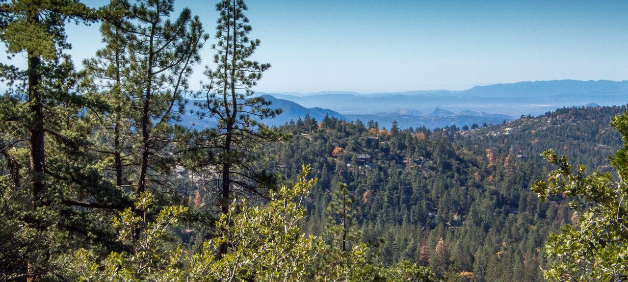 Pine Cove, Idyllwild, Californie, États-Unis d'Amérique