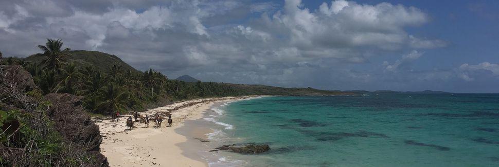 Le Marin, Martinica
