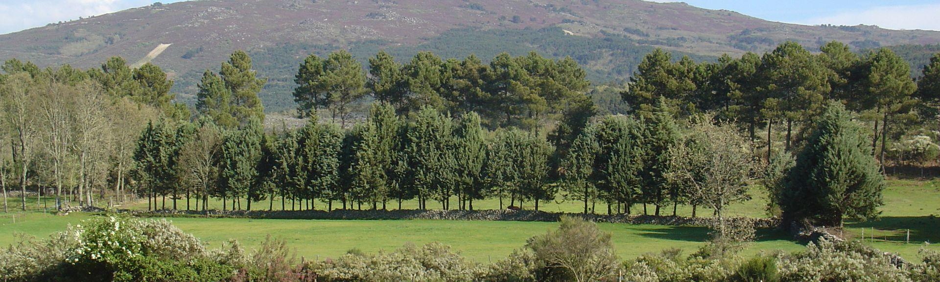 Fuenteguinaldo, Salamanca, Spain