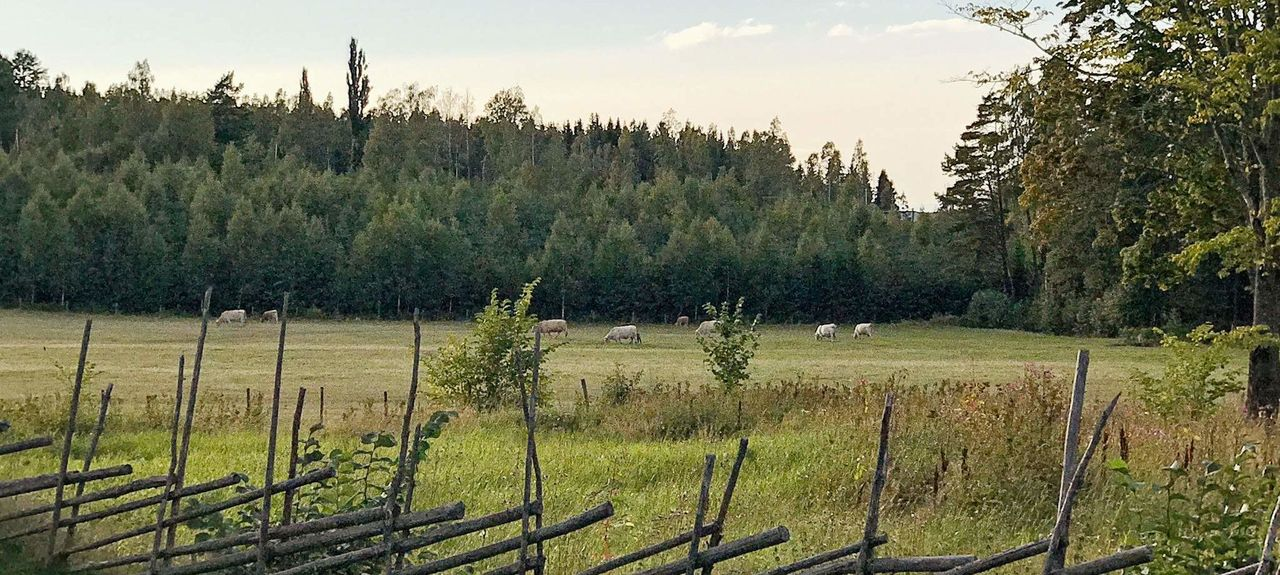 Hova, Västra Götaland County, Sweden
