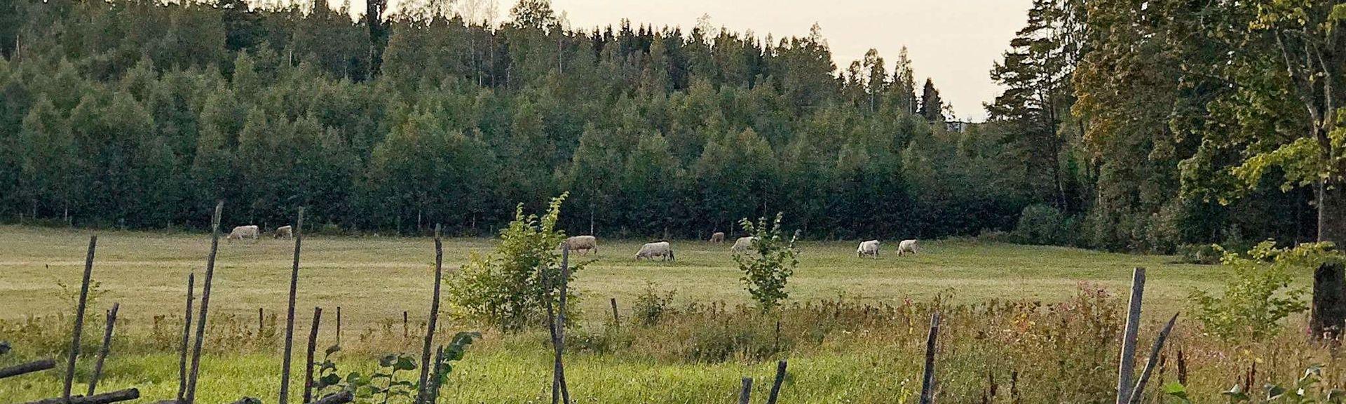 Hova, Västra Götalands län, Sverige
