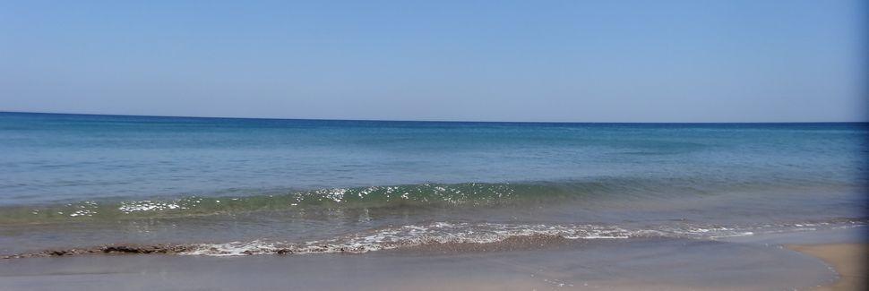 Tias, Ilhas Canárias, Espanha