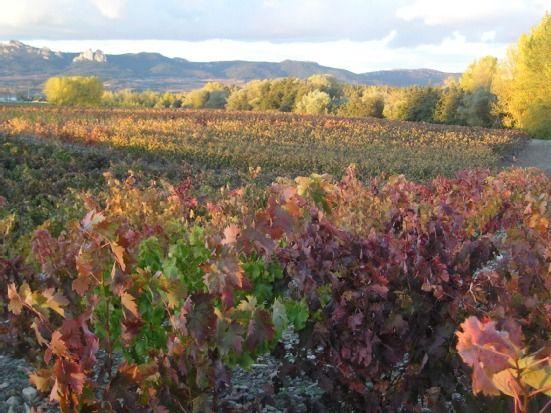 Hormilla, La Rioja, Espagne