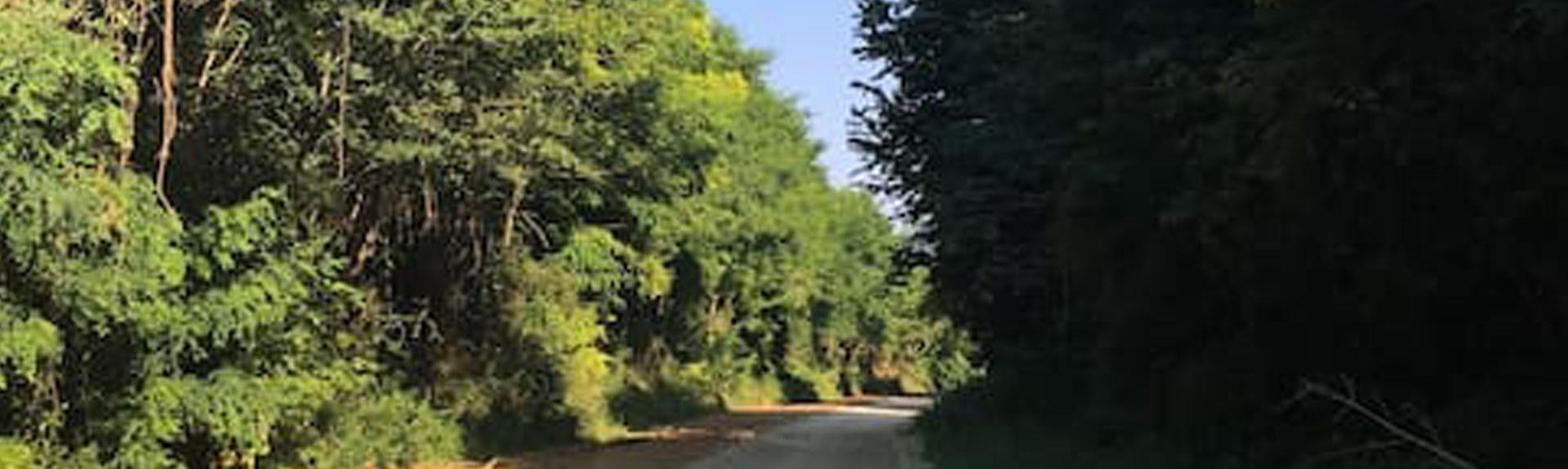 Ormoy-le-Davien, Hauts-de-France, Frankreich