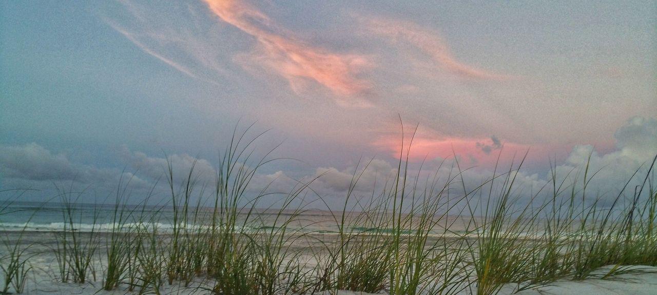 Grayton Beach, Santa Rosa Beach, Floride, États-Unis d'Amérique
