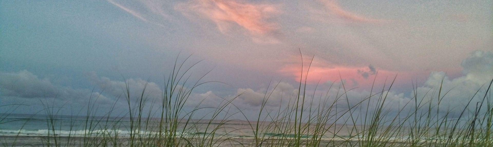 Parque estatal Grayton Beach, Santa Rosa Beach, Florida, Estados Unidos