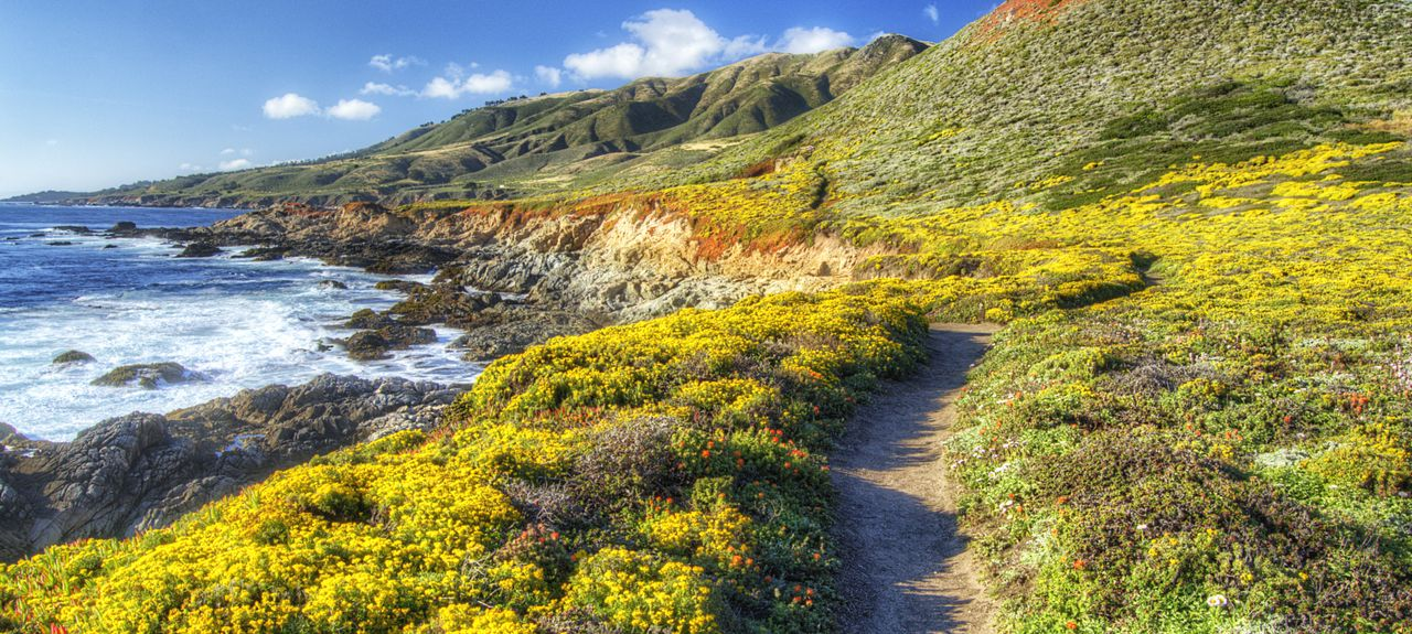Big Sur, CA, USA