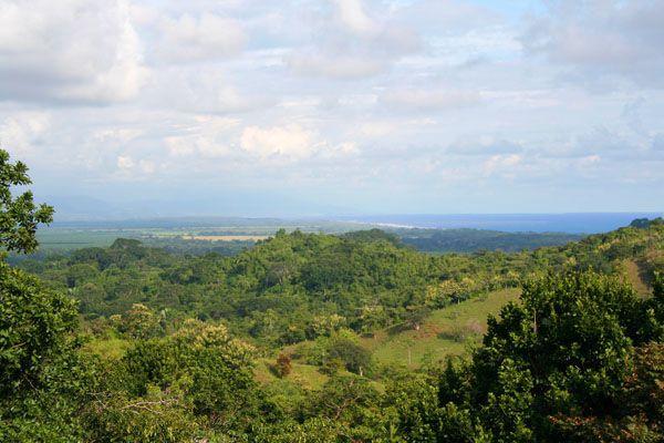 Valle Pura Vida, Manuel Antonio, Quepos, Costa Rica