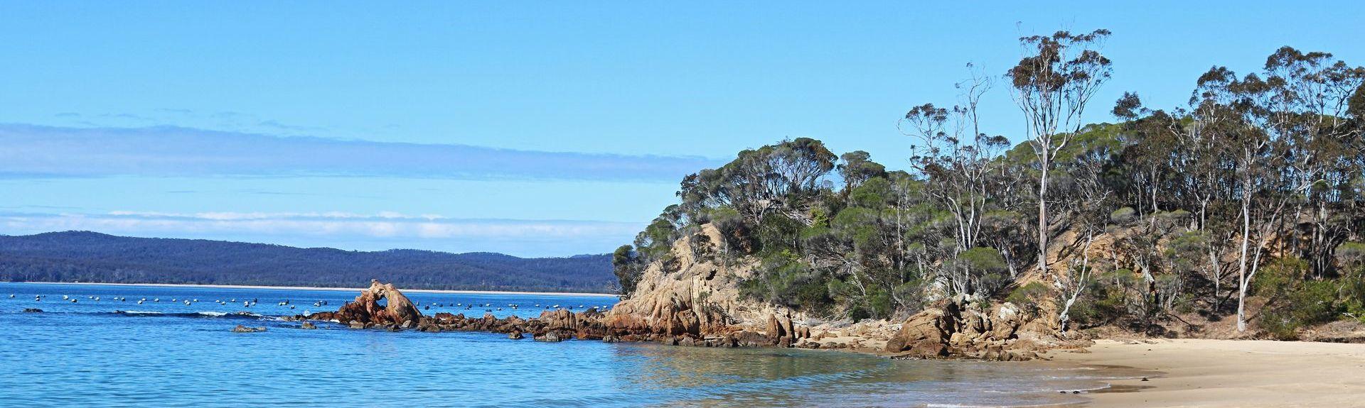Potoroo Palace, Yellow Pinch, New South Wales, Australia