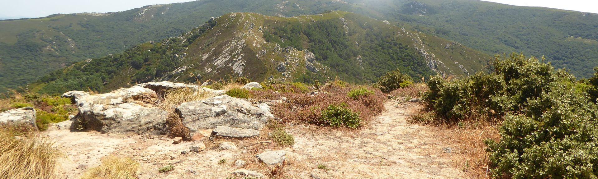 Cortes de la Frontera, Andalusia, Espanja