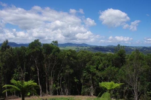 Parc national de la Nouvelle-Angleterre, Nouvelle Galles du Sud, Australie