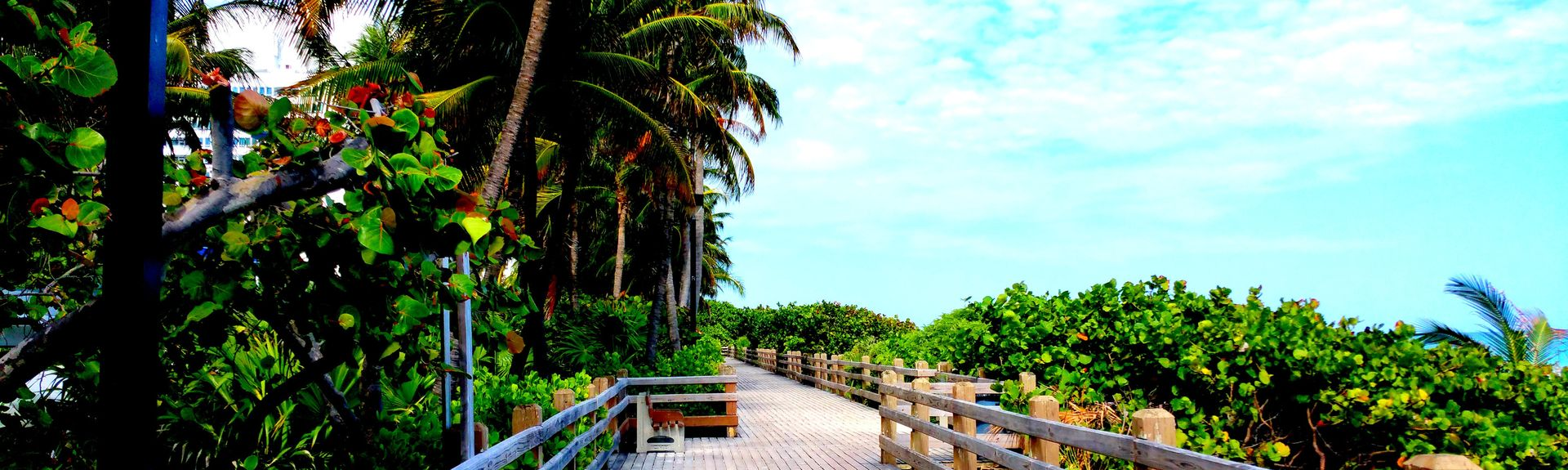 Fontainebleau Resort (Miami Beach, Floride, États-Unis d'Amérique)