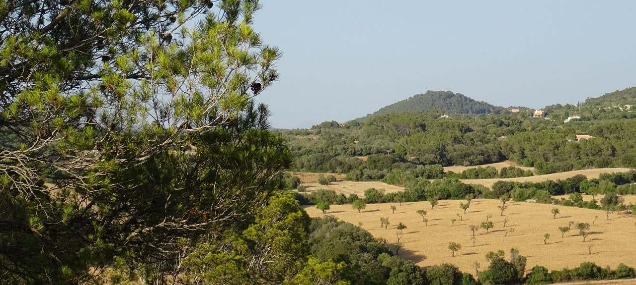 Campos, Balearic Islands, Spain