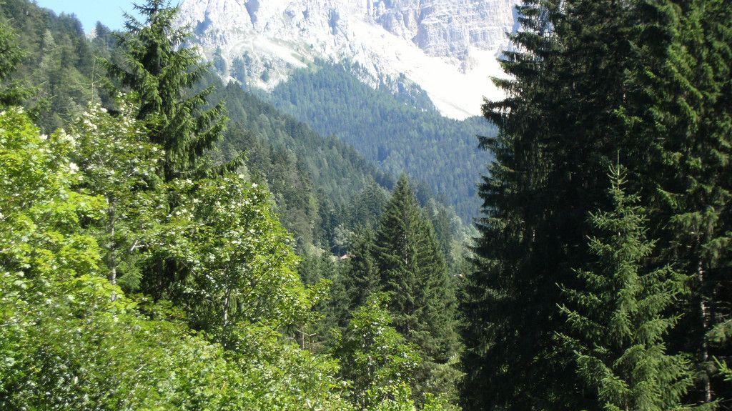 Dosso Veronza, Trento, Trentino-Alto Adige/South Tyrol, Italy