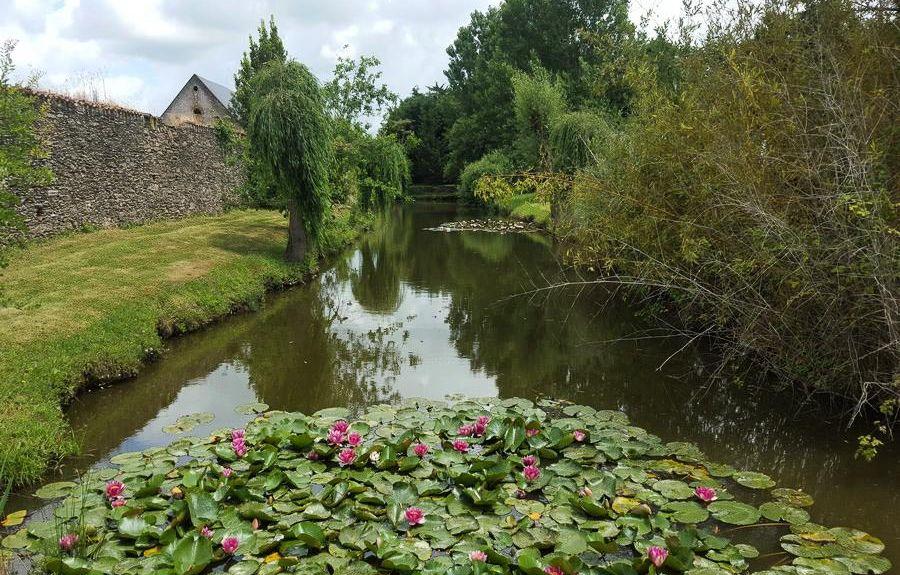 Froidfond, Pays de la Loire, France