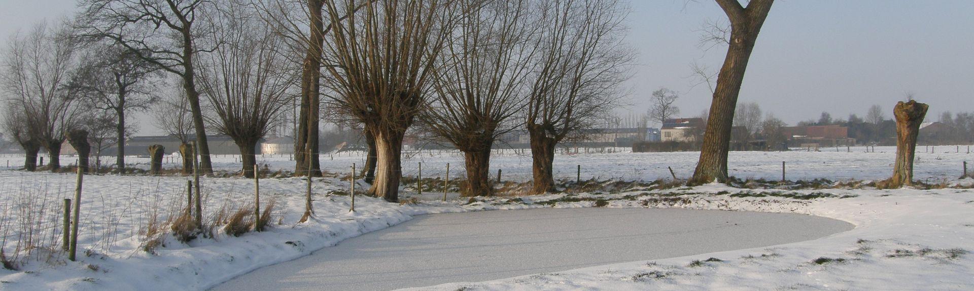 Κόρτεμαρκ, Φλαμανδική Περιοχή, Βέλγιο