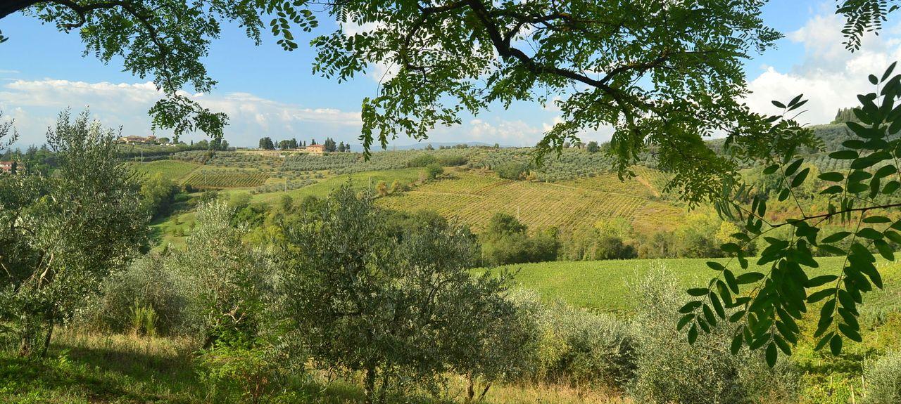 San Filippo A Ponzano, Metropolitan City of Florence, Tuscany, Italy