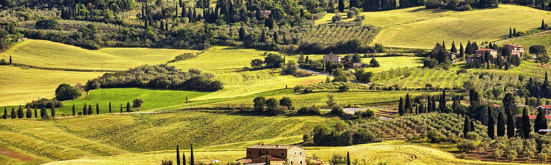 Poggio Antico, Montalcino, Tuscany, Italy