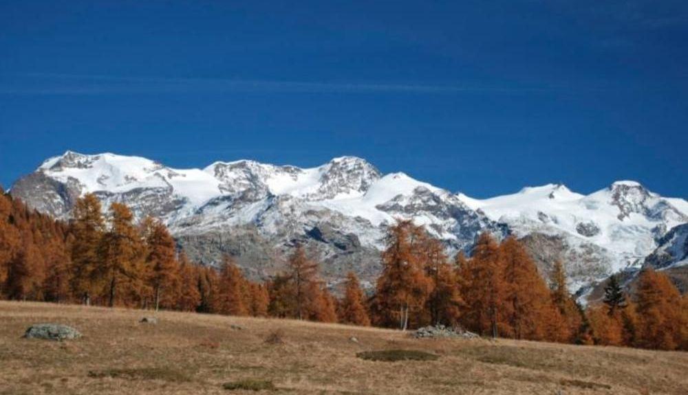 Monterosa skidområde, Gressoney-la-Trinite, Aostadalen, Italien