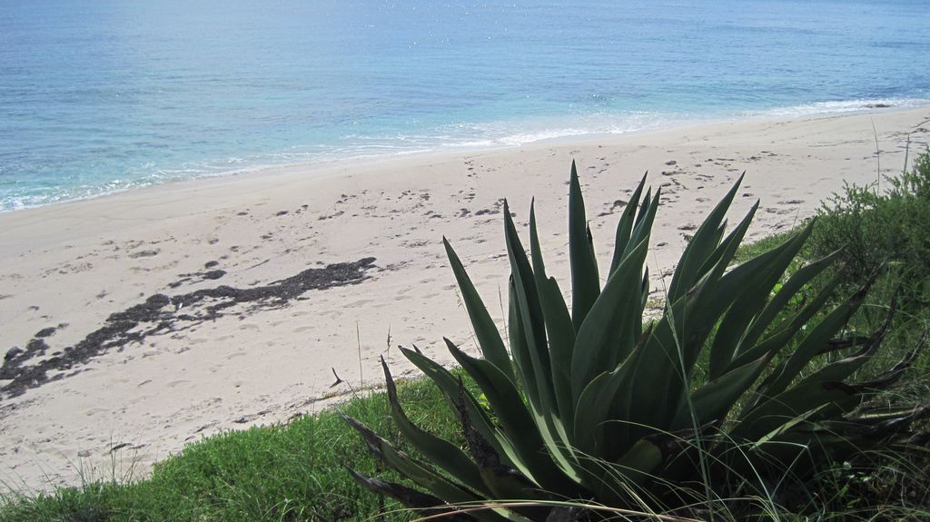 Poponi Beach, Governor's Harbour, Eleuthera Island, Bahamas