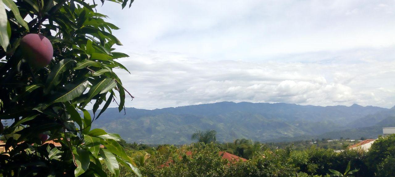 Apulo, Cundinamarca, Colombia