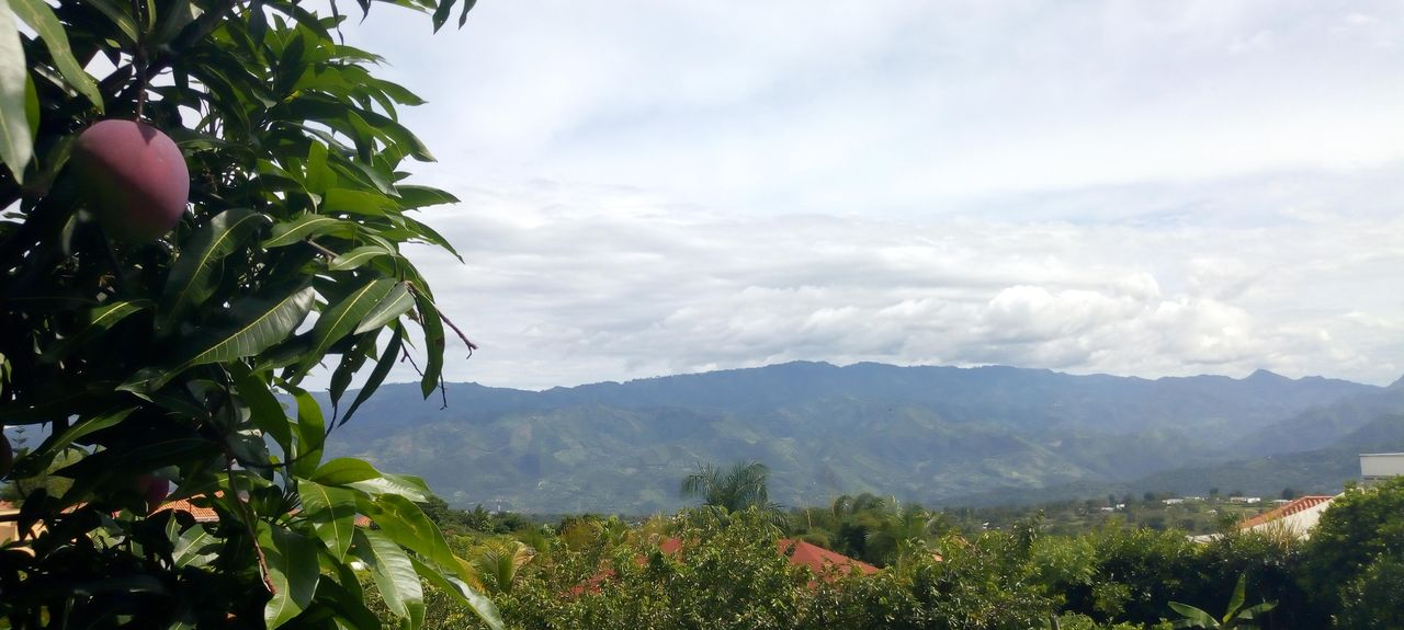 La Mesa, Cundinamarca, Colombia