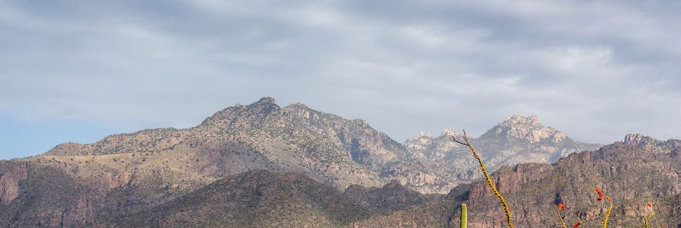 Mount Lemmon, Arizona, USA