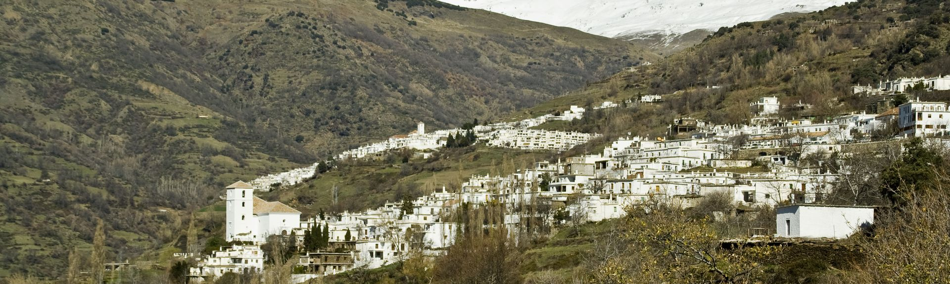 Centro-Sagrario, Granada, Andalucía, España