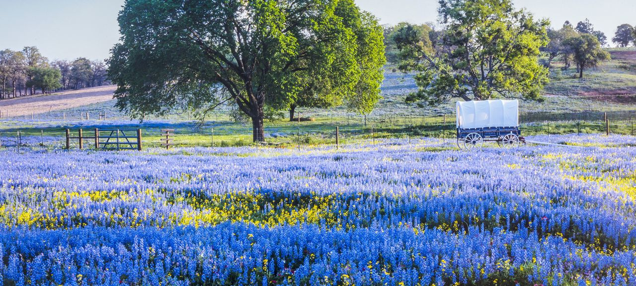 Hill Country, Texas, Estados Unidos