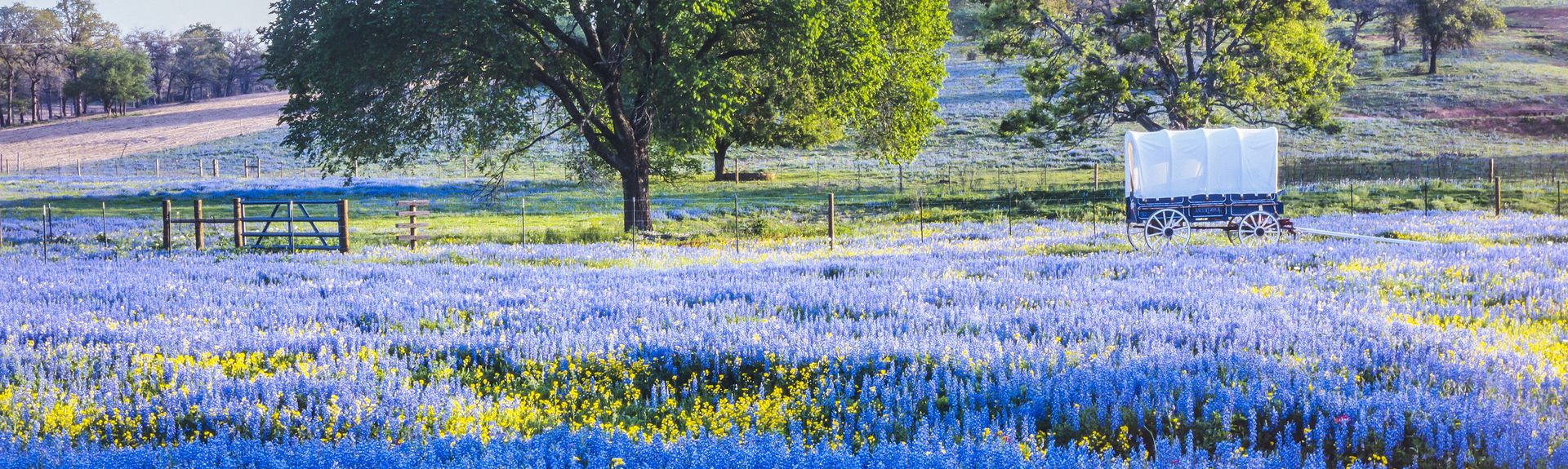 Hill Country, Texas, USA