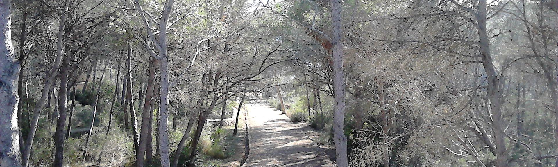 Cala Serena, Baleaarit, Espanja