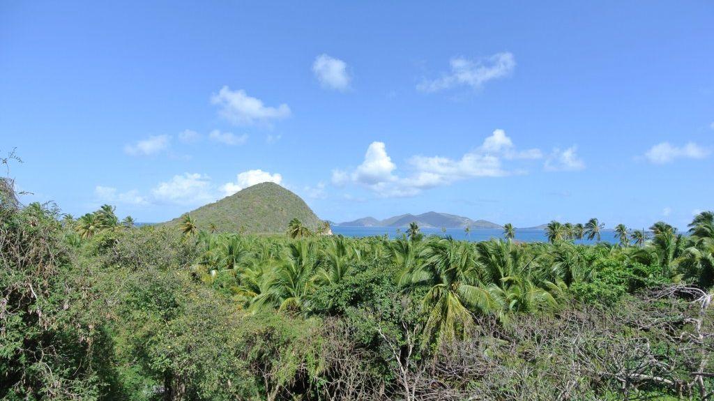 Cart Path, British Virgin Islands