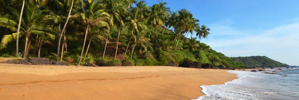 Cansaulimin asema, Cansaulim, Goa, Intia