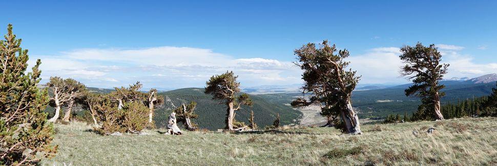 Alma, Colorado, Estados Unidos