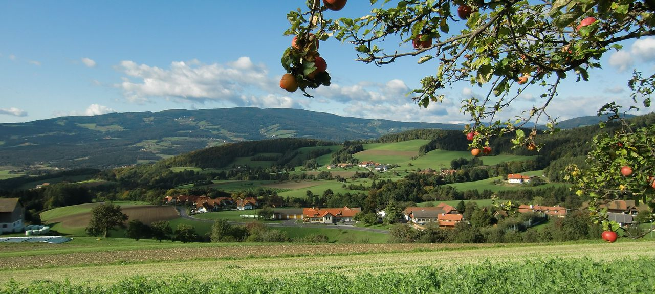 Pรถllau bei Hartberg, Stiermarken, Oostenrijk