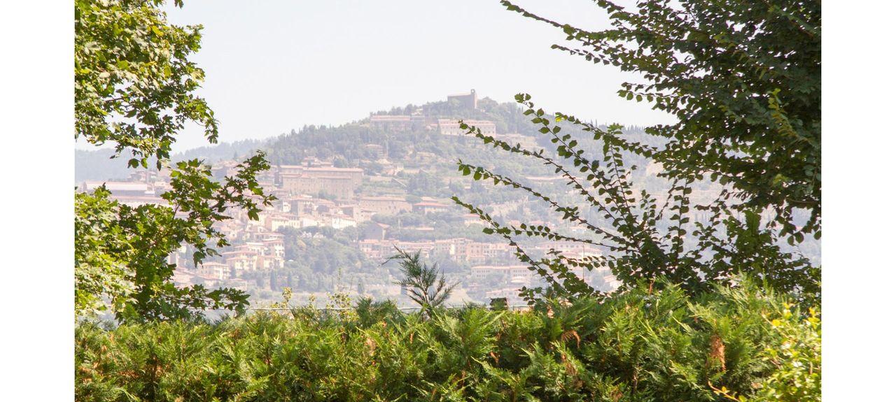 Cegliolo, Arezzo, Tuscany, Italy
