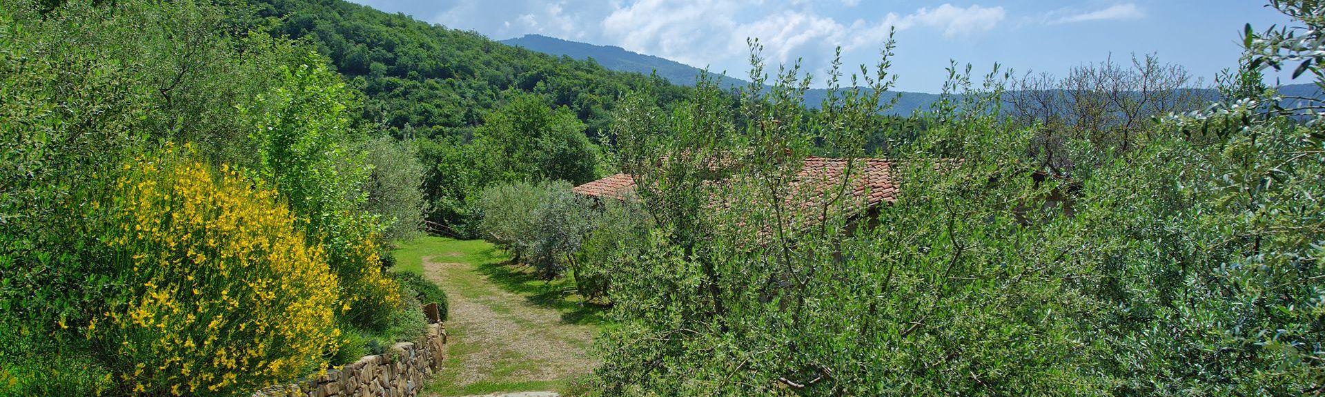 La Strada-Santa Cristina, Castiglion Fiorentino, Toscane, Italie