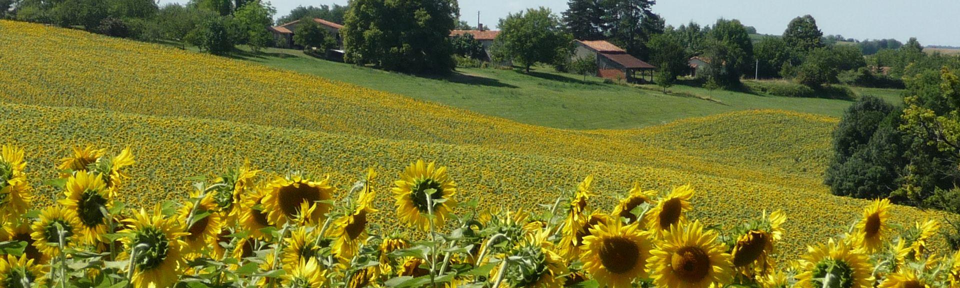 Lusignac, Dordogne, Frankreich