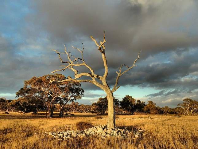 Strathalbyn, Zuid-Australië, Australië