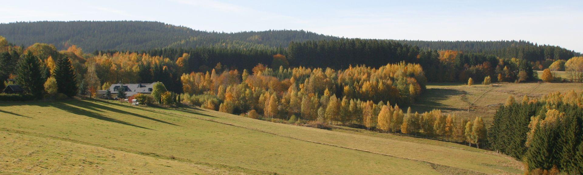Gruenhain-Beierfeld, Sassonia, Germania