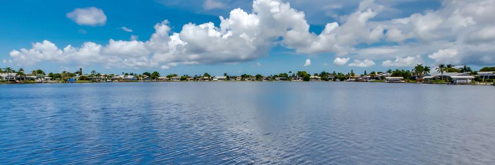 Pelican, Cape Coral, Florida, Vereinigte Staaten