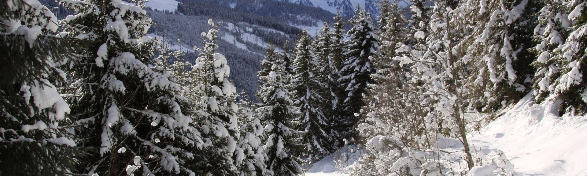 Hollersbach im Pinzgau, Austria