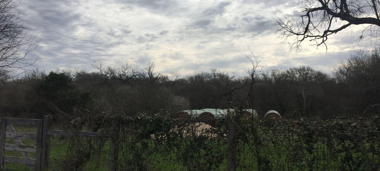 Rio Medina, TX, USA