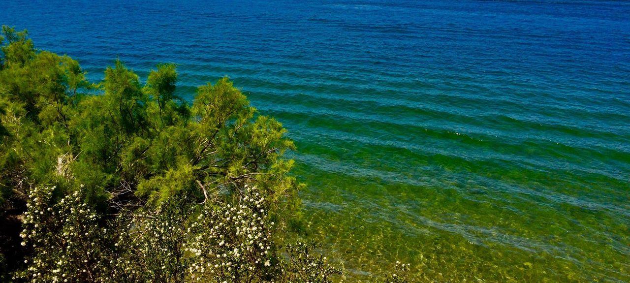 Windsor Beach, Lake Havasu City, AZ, USA