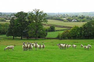 Stoulton, Worcestershire, UK