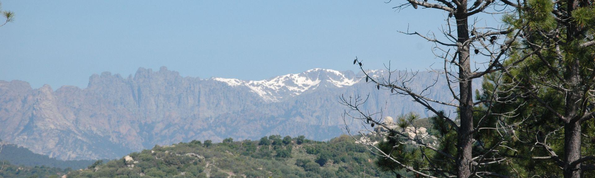 Gialla, San-Gavino-di-Carbini, Corsica, France