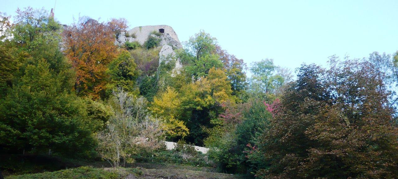Bouxwiller, Alsace-Champagne-Ardenne-Lorraine, France
