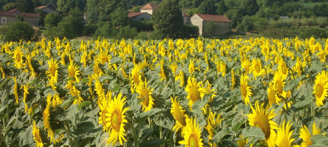 Valeuil, Dordogne, France